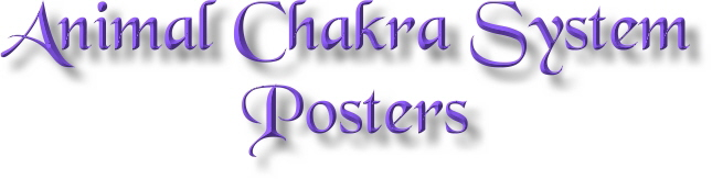 Animal Chakra System Posters, Cat, Dog & Horse Chakra System Posters