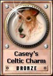 Casey's Celtic Charm Award