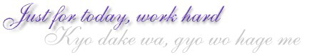 Reiki Principle: Just for today, work hard