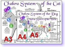 Animal Chakra System, Horse, Dog & Cat - new poster sizes available: A3, A4 & A5
